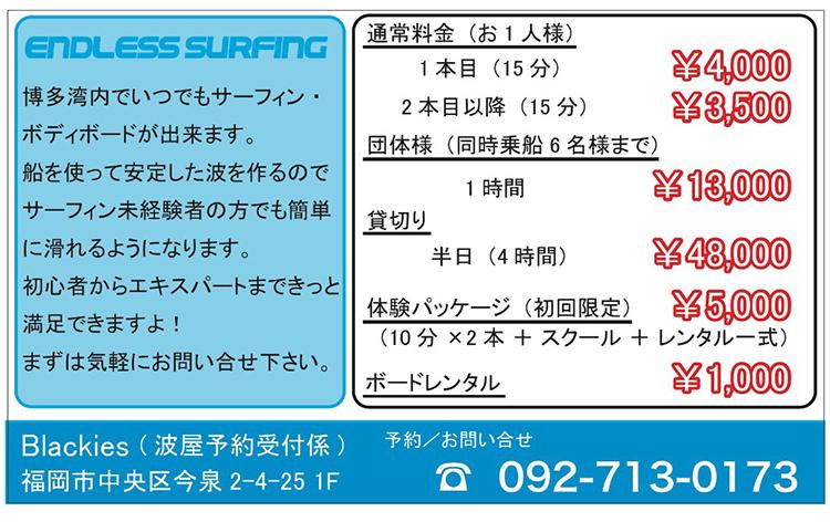 Endless Surfin by Blackies 波がなくても波乗り出来る。料金表